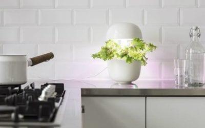 Eco design e illuminazione: 4 lampade per una casa bella e sostenibile