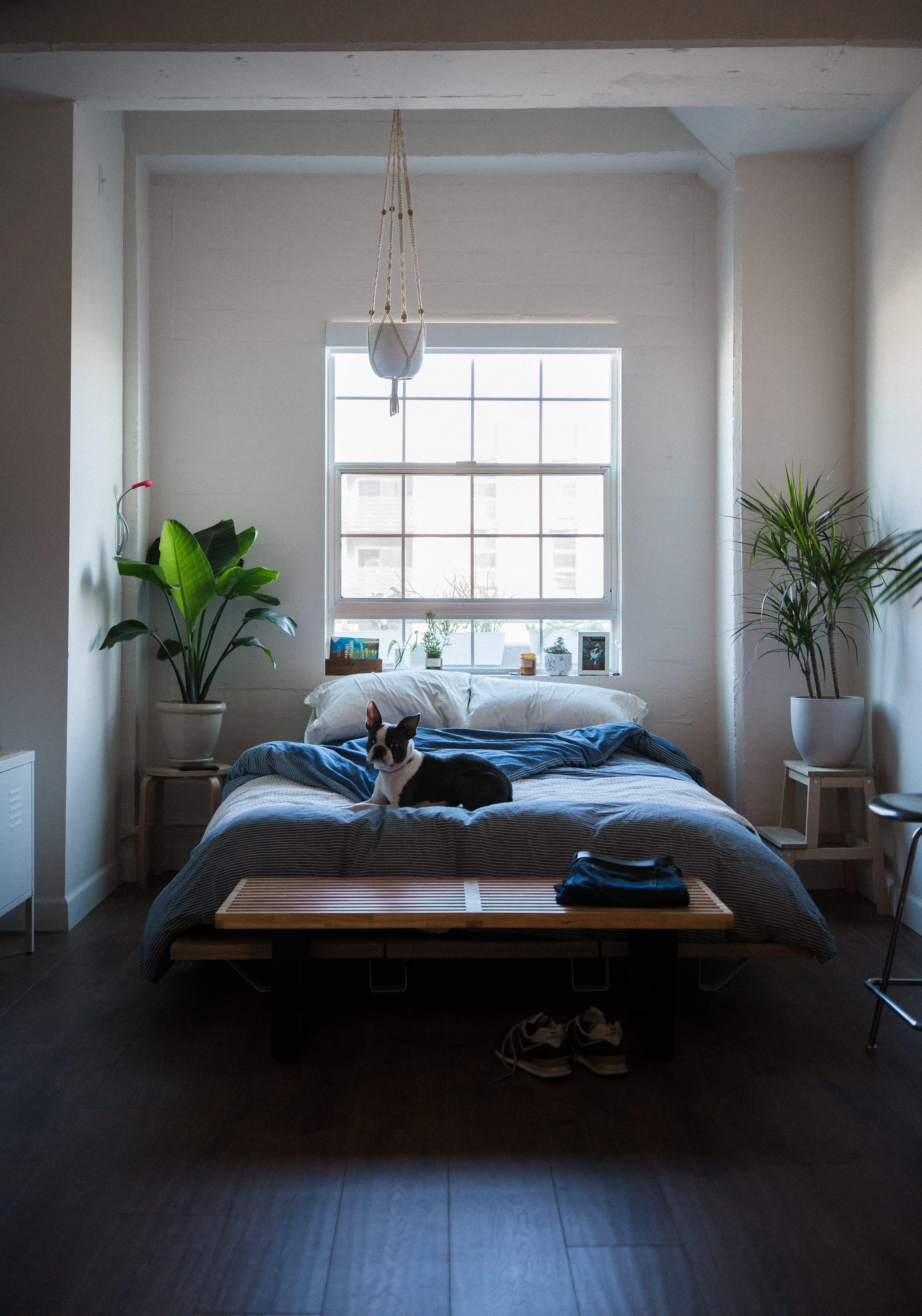 Idee di design per la camera da letto: 5 trucchi per una stanza da ...