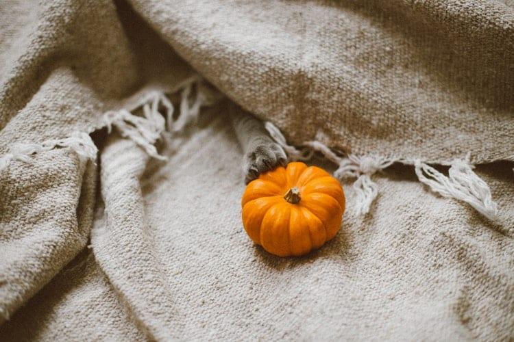La coperta: uno dei must have per l'autunno